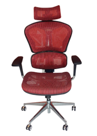Red Mesh Swivel Chair